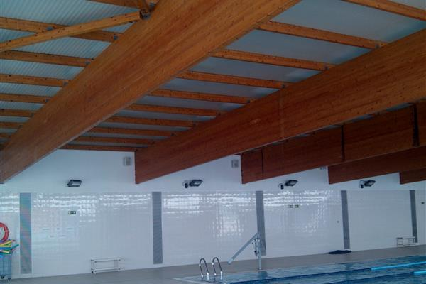 ASSESSMENT OF THE FIRE RESISTANCE OF THE ROOF OF THE MUNICIPAL SWIMMING POOL IN CERVELLO